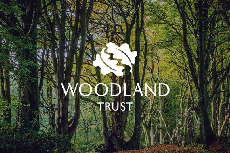 Image result for logo woodland trust